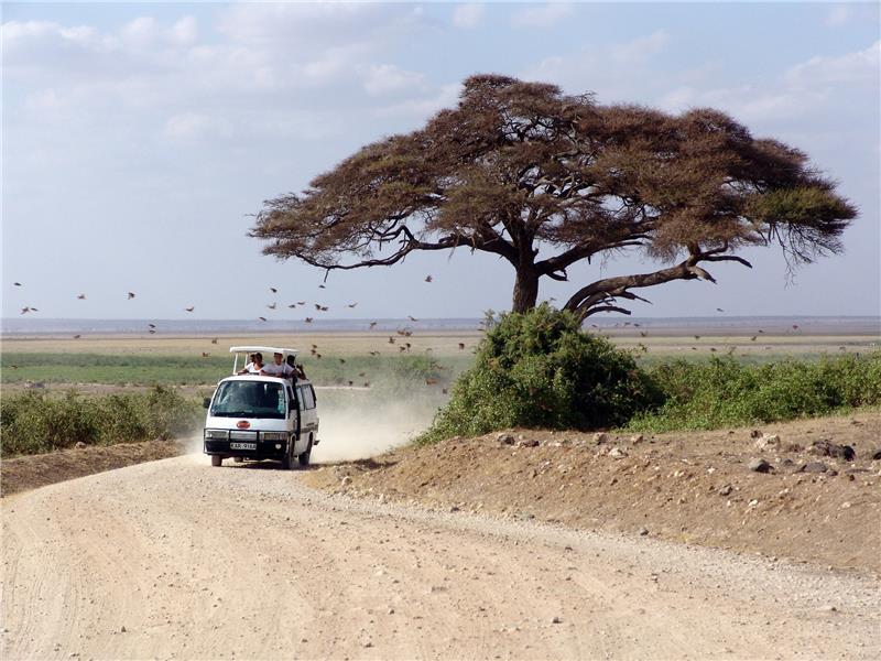 Kenija; Mombasa - 12 dana